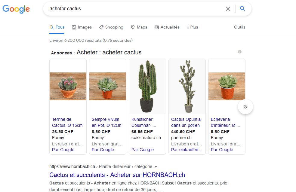 """La recherche de mots-clés:  """"acheter cactus"""""""